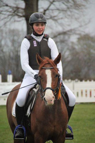 Sieger Geländespringen junge Pferde